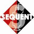 Изображение за sequent