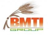 Изображение за BMTI Group Logo