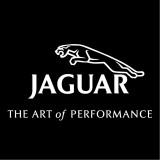 Изображение за Jaguar