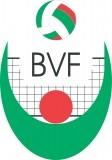 Изображение за BVF