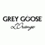 Изображение за gray goose orange
