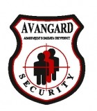 Изображение за Avangard