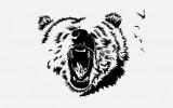 Изображение за мечка