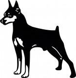 Изображение за kуче